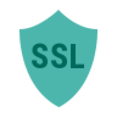 icons8-segurança-ssl-96